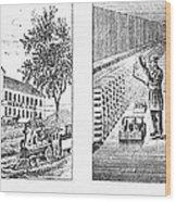 New York: Winery, 1878 Wood Print
