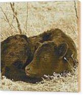 Newborn - Sepia Wood Print