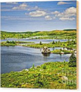 Newfoundland Landscape Wood Print