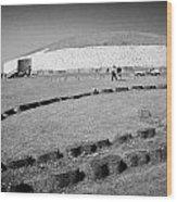 Newgrange Bru Na Boinne Site Wood Print
