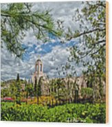 Newport Beach Temple Pine Wood Print