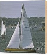 Newport Sailing Wood Print