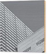 Newseum Contrasting Facades II Wood Print