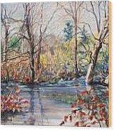 Nezinscot Fall Wood Print by Geoffrey Workman