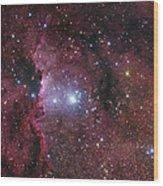 Ngc 6188, Starforming Region In Ara Wood Print