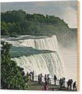 Niagara Falls State Park Wood Print by Mark J Seefeldt