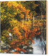 Niels' Third Pond Wood Print