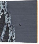 Night Flight Wood Print