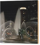 Night View Of Swann Fountain Wood Print