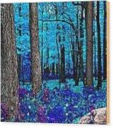 Night Vision Wood Print