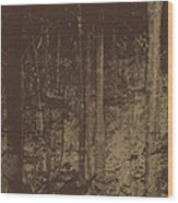 Night Woods Wood Print