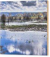 Nisqually Wildlife Refuge P13 Wood Print