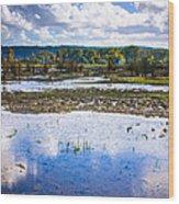 Nisqually Wildlife Refuge P17 Wood Print