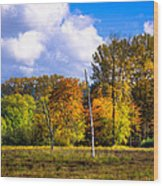 Nisqually Wildlife Refuge P22 Wood Print