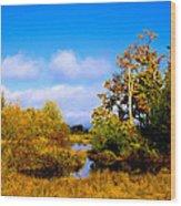 Nisqually Wildlife Refuge P25 Wood Print