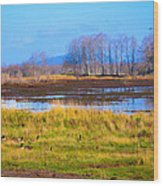 Nisqually Wildlife Refuge P5 Wood Print