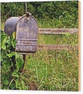 No Mail Today Wood Print