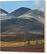 Nome Creek Wood Print