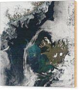 North Atlantic Bloom Wood Print by Science Source