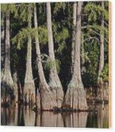 North Carolina - Lake Wood Print