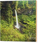 North Falls Wood Print