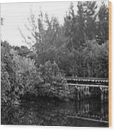 North Fork River Wood Print
