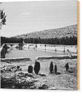 North Pool In 1939 Wood Print