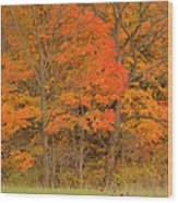 Northeast Fall Colors Wood Print