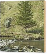 Northumberland, England A River Flowing Wood Print by John Short