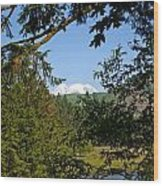 Northwest Trek  Wood Print