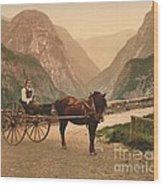Norwegian Carriage Wood Print
