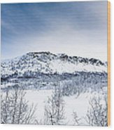 Norwegian Winter Wood Print