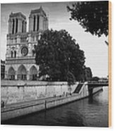 Notre Dame Along The Seine Wood Print