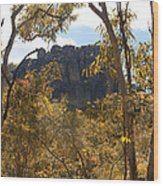 Nourlangie Rock Outlook Wood Print
