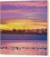 November Lagerman Reservoir Sunrise  Wood Print by James BO  Insogna