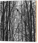 November Wood Wood Print