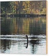 November's Dance Wood Print