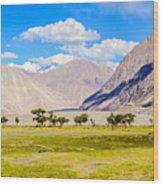Nubra Valley Ladakh Wood Print