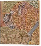 Nuge Art Wood Print