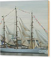 Nve Cisne Branco Passing By Fort Mchenry Wood Print