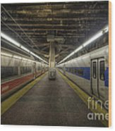 Nyc Subway Wood Print