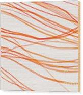 Nylon Fibers Wood Print