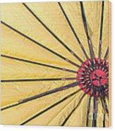 Nylon Sun Rays Wood Print