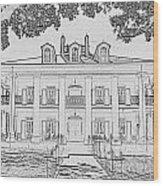 Oak Alley Sketch Wood Print