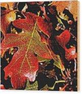 Oak Colors Wood Print by Darryl Gallegos