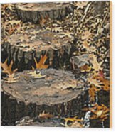 Oak Creek Steps Wood Print