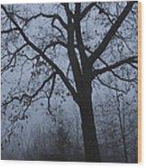 Oak In The Fog Wood Print