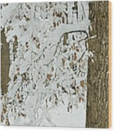 Oak In The Snow Wood Print