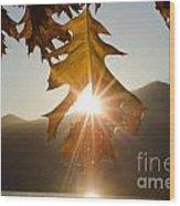 Oak Leaf Wood Print
