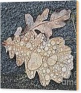 Oak Leaves Wood Print